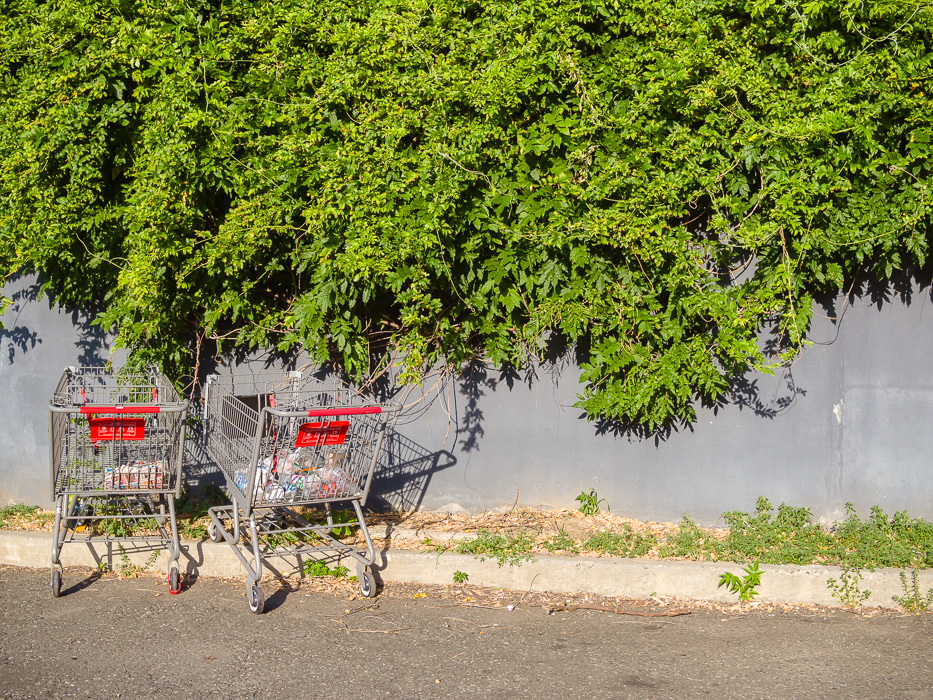 Carts by Susanne Sasic